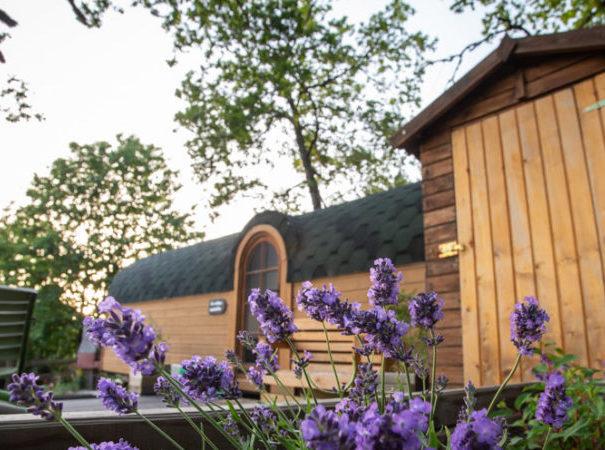cabane-roulotte-grandsaigne-correze-monedieres-2-850x450